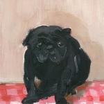 Isobel Brigham - Black Pug 2008