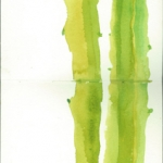 Cacti 2012 Watercolour on two sheets of A5-paper