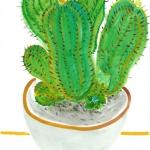 Isobel Brigham - Cactus 2012