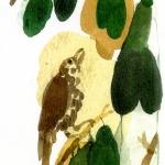 Isobel Brigham - Love Bird 3 2005