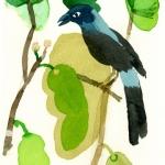 Isobel Brigham - Love Bird 4 2005