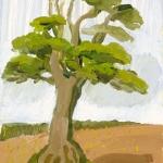 Isobel Brigham - Oak Tree 2004
