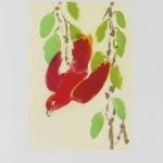 Isobel Brigham - Red Parrot 2006