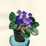 Isobel Brigham - Violets 2008